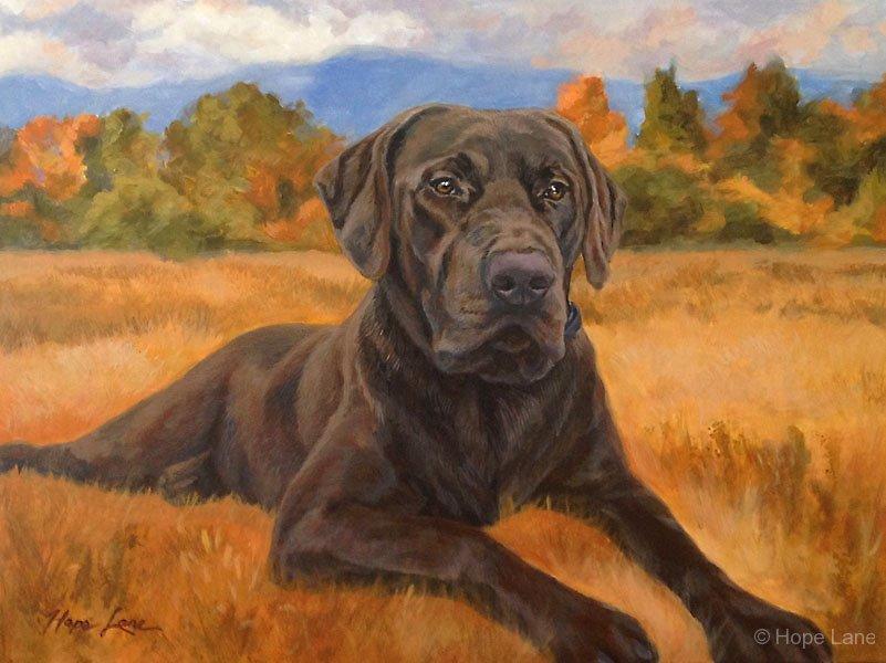 Bear, custom pet portrait of a Chocolate Labrador Retriever by Hope Lane