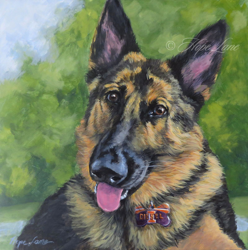 Diesel the German Shepherd custom pet portrait painting by Hope Lane