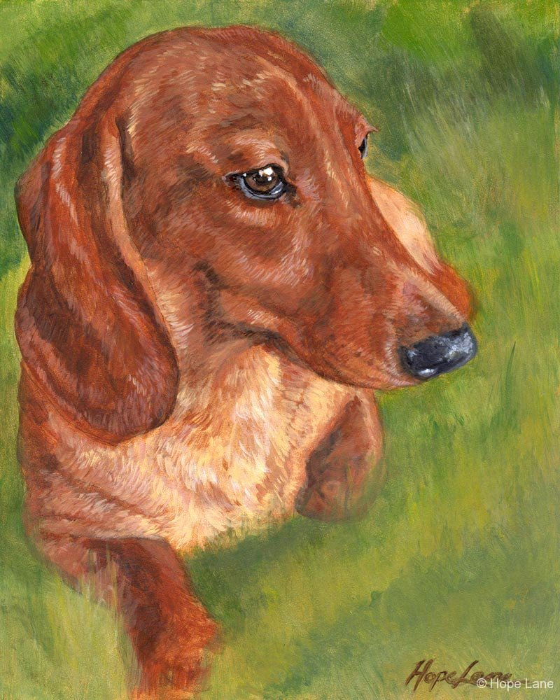 Dachshund Love dog painting by Hope Lane