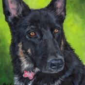 Ariel, German Shepherd custom pet portrait by Hope Lane