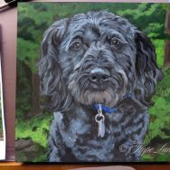 Halfway Through Painting A Schnoodle named Kole